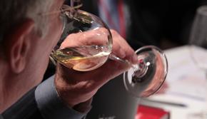 Moravská vína získala tři medaile v Madridu